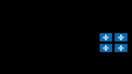 Quebec's flag with logo that says Régie de l'assurance maladie